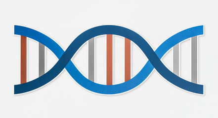 DNA double helix strand icon
