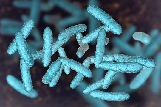 Probiotic bacteria, normal intestinal microbiota, 3D illustration. Bacteria used as probiotic treatment, yoghurts, healthy food