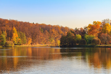 Pond and trees with golden leaves on shore at sunny autumn day
