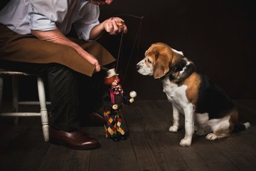 Dog with puppeteer