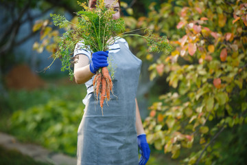 Photo of woman with carrot in hands on garden