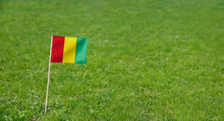 Guinea flag. Photo of Guinea flag on a green grass lawn background. Close up of national flag waving outdoors.