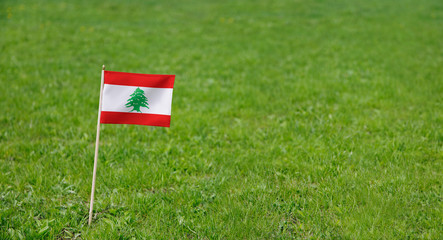 Lebanon flag. Photo of Lebanese flag on a green grass lawn background. Close up of national flag waving outdoors.