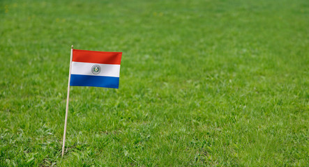 Paraguay flag. Photo of Paraguay flag on a green grass lawn background. Close up of national flag waving outdoors.