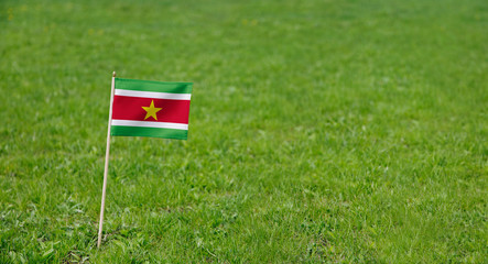 Suriname flag. Photo of Suriname flag on a green grass lawn background. Close up of national flag waving outdoors.