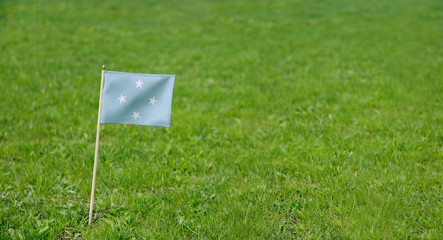 Micronesia flag. Photo of Micronesian flag on a green grass lawn background. Close up of national flag waving outdoors.