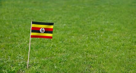Uganda flag. Photo of Uganda flag on a green grass lawn background. Close up of national flag waving outdoors.