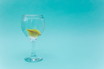 Yellow fish in a glass on a blue background