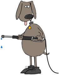 Brown dog using a pressure washer
