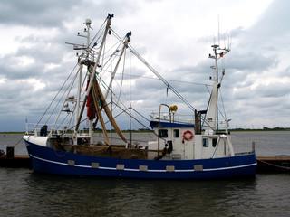 Fischkutter in Tönning