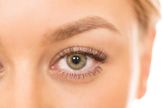 Cropped close up of an eye of a gorgeous naturally beautiful woman isolated on white sight beauty cosmetology skincare femininity confidence eyes face healthy skin flawless smooth soft fresh clean