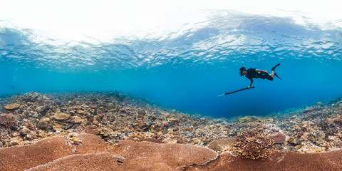 360 of spearfisher on reef