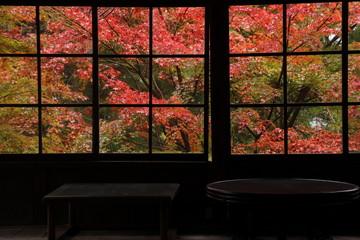 寺の小屋の窓から見えた秋景色