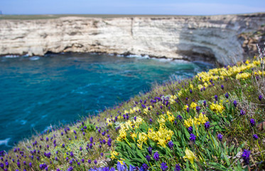 Flowers on sea background