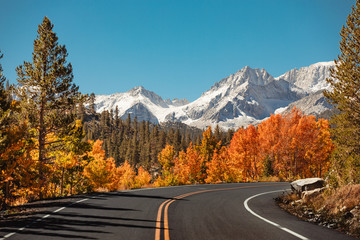 Empty road surrounded by colorful trees and snow covered mountains in the distance