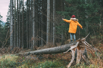 Boy in bright yellow parka (puffer jacket) walks in pine forest on the falling tree