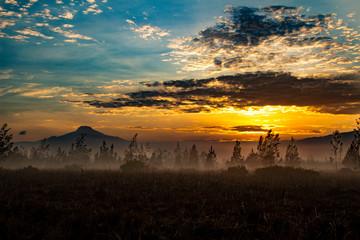 Meravigliosa alba in Machinguì, con vista dei vulcani Cayambe, Cotopaxi e Pichincha. Ecuador