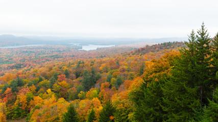 Fall on Bald Mountain in the Adirondacks