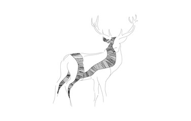 A black and white deer sketch with a white background