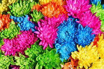 Colorful flowers, full frame