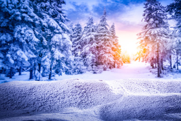 Snow composition in winter evening