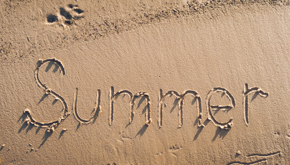 The word summer is written in the sand.Trail of dog. Summer beach concept.