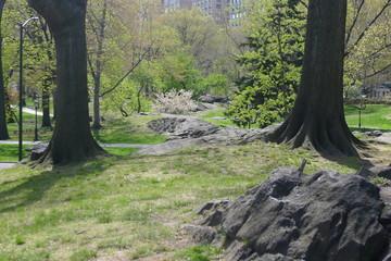 Bedrock of New York City