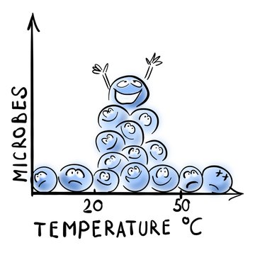Temperature and bacterial growth