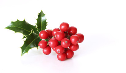 Christmas holly with red berries. Traditional festive decoration. Holly branch with red berries on white table background. Flat lay, top view.Blurred.