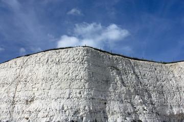 Chalk Cliffs, Rottingdean, East Sussex, UK