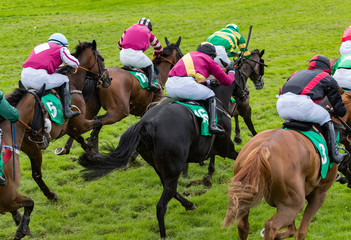 Group of jockeys and race horses running