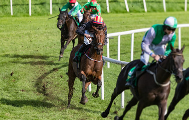 Jockey and race horse galloping for position on the turn of the race track