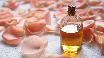 Glass bottle of aroma oil among pale rose petals on white terry towel. SPA and caring concept, selected focus.