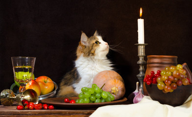 still life with cat pumpkin grapes dog rose green bottle grapes viburnum apples glass and tin glasses and a burning candle in a candlestick