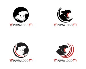 Puma icon logo template vector