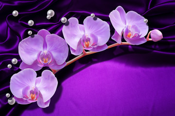 3d wallpaper, orchids and pearls on silk background. Celebration 3d background.