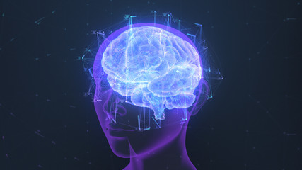 3D render of a holographic digital style human brain conveying the idea of artificial intelligence, bio hacking and the fusion of nature, technology and science