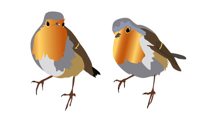 Two small robins on a transparent background. Can be used independently of each other.