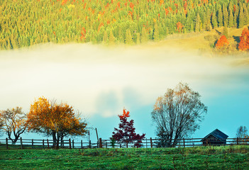 Autumn. Fall. Peaceful morning autumn panorama with travel cottage, forest and fog in the mountains