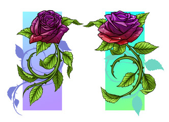 Graphic detailed cartoon red and violet roses flower with stem and leaves. On white background. Vector icon set.