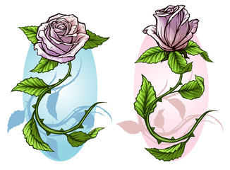 Graphic detailed cartoon warm pink roses flower with stem and leaves. On white background. Vector icon set.