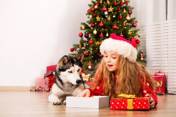 Portrait of happy five year old girl with long blonde curly hair wearing red knitted sweater sitting with her siberian husky pet friend in front of Christmas tree. Background, copy space, close up.