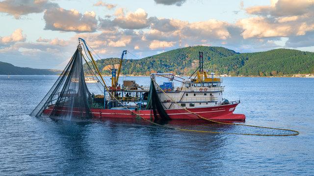 Commercial fishing boat sailing in Bosphorus, istanbul, Turkey