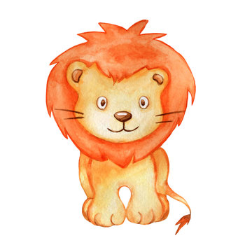 Cute watercolor illustration lion isolated