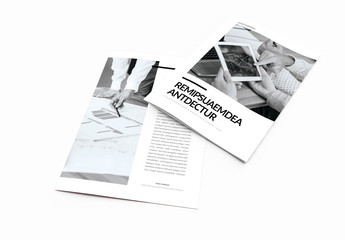 Black and White Brochure Layout