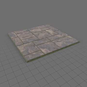 Stone paving tiles module 2