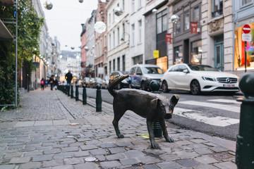 Zinneke in Brussels