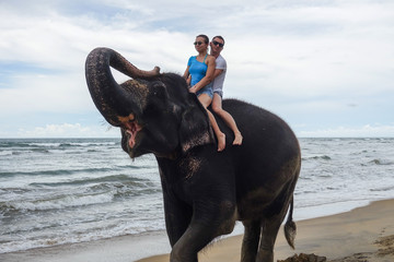 Portrait of a happy young couple on an elephant with trunk up on the background of a tropical ocean beach. Tropical coast of Sri Lanka