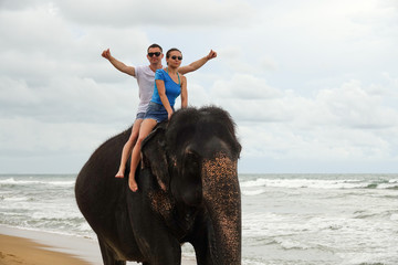 Portrait of a happy young couple on an elephant on the background of a tropical ocean beach. Tropical coast of Sri Lanka