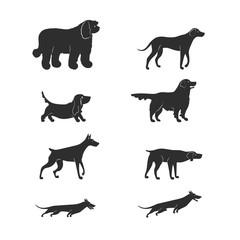 Vector illustration. Set flat style icons of dogs. Simple silhouettes of different breeds: basset hound, komondor, rhodesian ridgeback, golden retriever, dobermann, weimaraner, dachshund.
